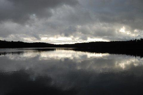 2007366.jpg