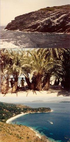 1903181.jpg