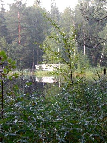 2005581.jpg